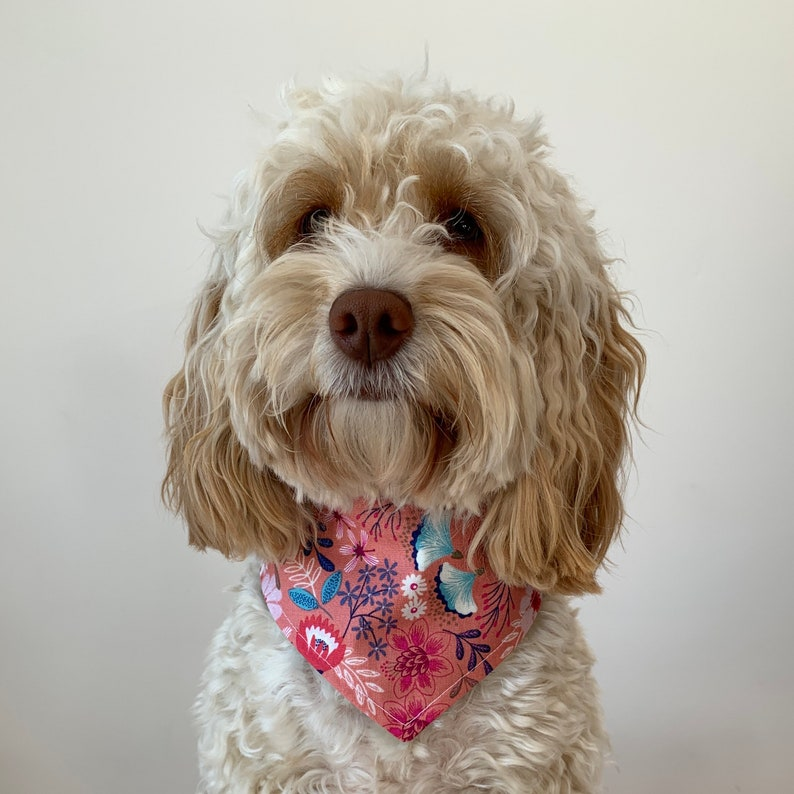 Reversible Dog Bandana in a stunning coral pink and turquoise image 0