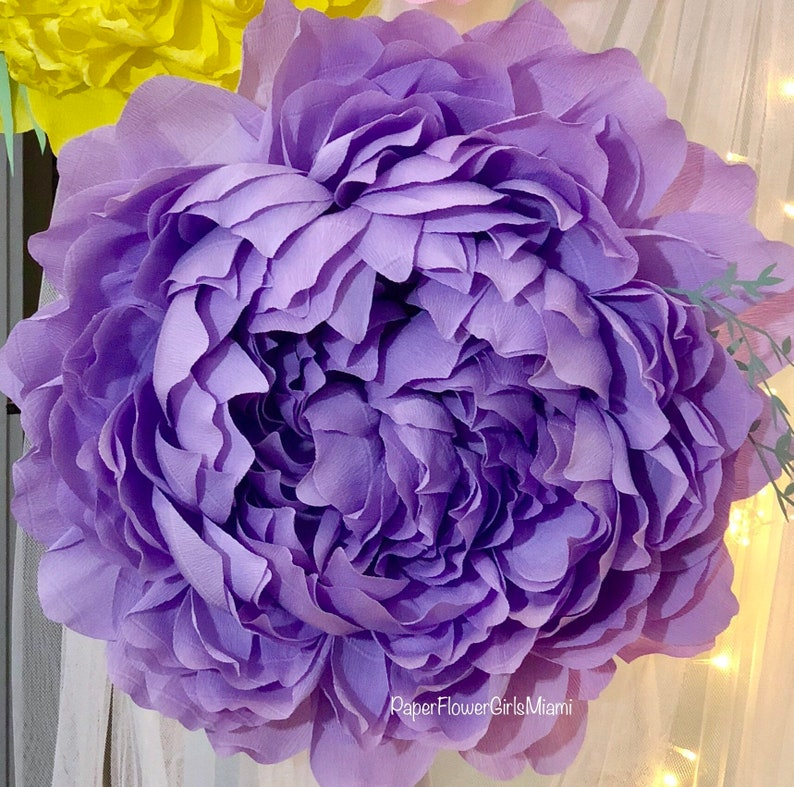 Giant Crepe Paper Peony Customize The Size Color And Quantity