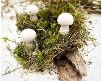 Decorative mushrooms from Raysin