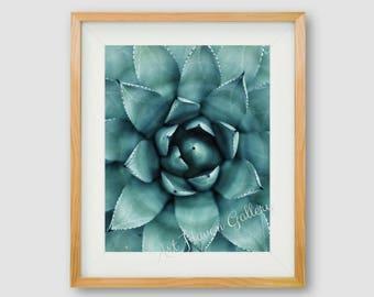 Succulent Print, PRINTABLE Art, Cactus Wall Art, Succulent Print, Photographic Print, Floral Wall Art, Botanical Print, Minimalist Wall Art