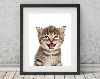 Nursery Animal Print,  Printable Art, Kitten Print, Nursery Wall Art, Nursery Decor, Cat Art, Baby Room Decor, Cute Animals, Kid's Room Art