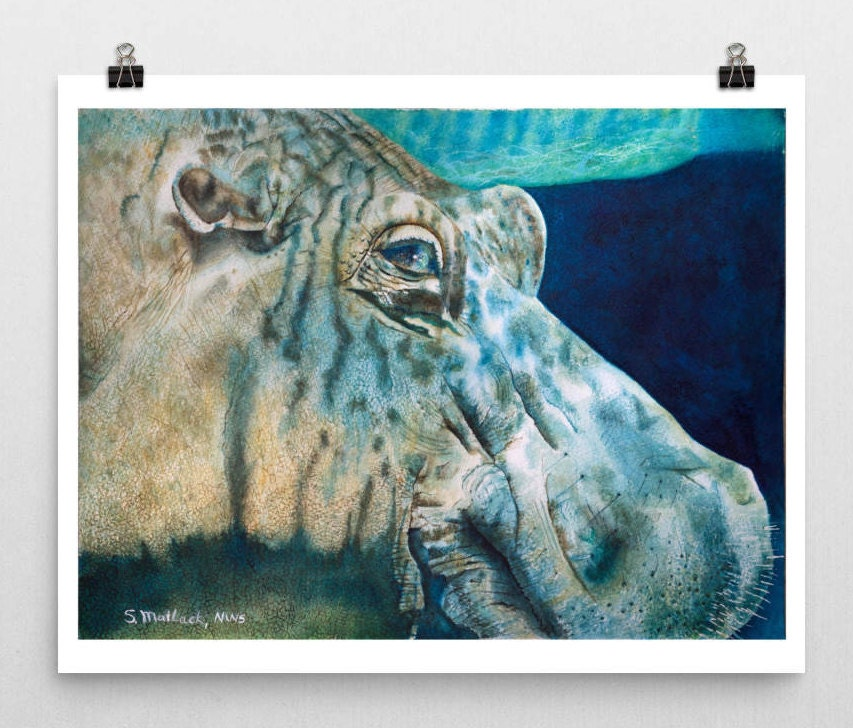 Hippo Art Images: Hippo Art Hippo Print Hippo Watercolor Hippo Painting