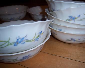 Vintage Arcopal Made In France Blue Iris Bowls Set of Nine