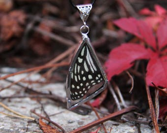 Real Butterfly Wing Necklace, Pendant with butterfly wing, gift for nature lover, real butterfly wing suspended between glass