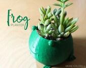 Cute Frog Pot ~ Animal Pl...