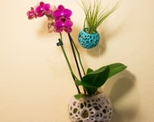 DIY Kokedama, Hanging Planter, Orchid Pot, Air Plant Holder, Moss Ball, Voronoi Hanging Planter, Jellyfish, Moss Planter, Bonsai Pot
