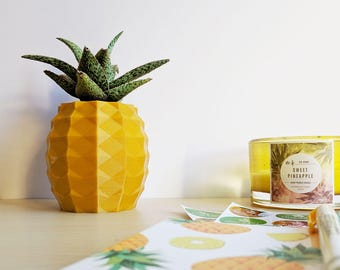 Aloe Pineapple Pot, Pineapple Succulent Planter, Golden Pineapple Aloe Holder, Pineapple Planter
