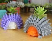 Baby Hedgehog Planter for...