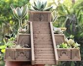 Aztec Succulent Planter, ...