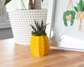 Small Pineapple Succulent Pot, Pineapple Planter for Haworthia, Pineapple Succulent Planter, Cute Pineapple Pot, Succulent Pineapple