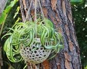 DIY Hanging Planter; Koke...