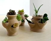 Mini Succulent Planter Set for Cuttings, Mini Strawberry Planters, Miniature Succulent Pots, 3D Printed Planter, Air Plant Holder