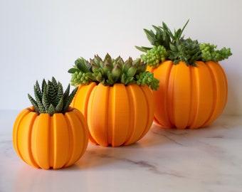 Succulent Pumpkin Planter, Fall Succulent Planter, Autumn Pumpkin Pot, Fall Decor Pumpkin, Thanksgiving Pumpkin, Thanksgiving Table Decor