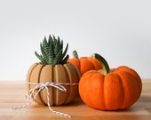 Wood Pumpkin Succulent Planter Centerpiece, Decorating Pumpkin for Autumn Decor, Small Plant Pot