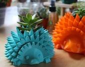 Baby Hedgehog Pot for Suc...