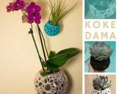 Kokedama, Orchid Pot, Str...