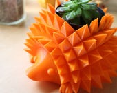 Medium Hedgehog Planter ~...