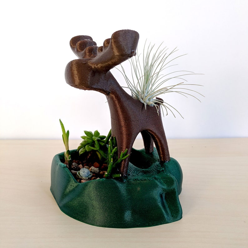 Moose Air Plant Holder and Succulent Planter Cute Moose image 0