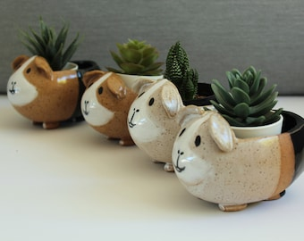 Guinea pig Planter with Drainage - Pottery - Clay Flower Pot - Modern Handmade -Plant/Succulent/Indoor Garden
