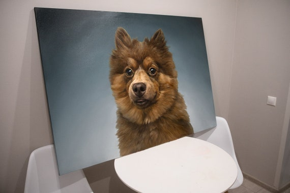 Hoodie No Step Two Pet A Eurasier Step Two Step One