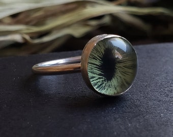 Green Glass Cat Eye Ring Size 8 | Sterling Silver