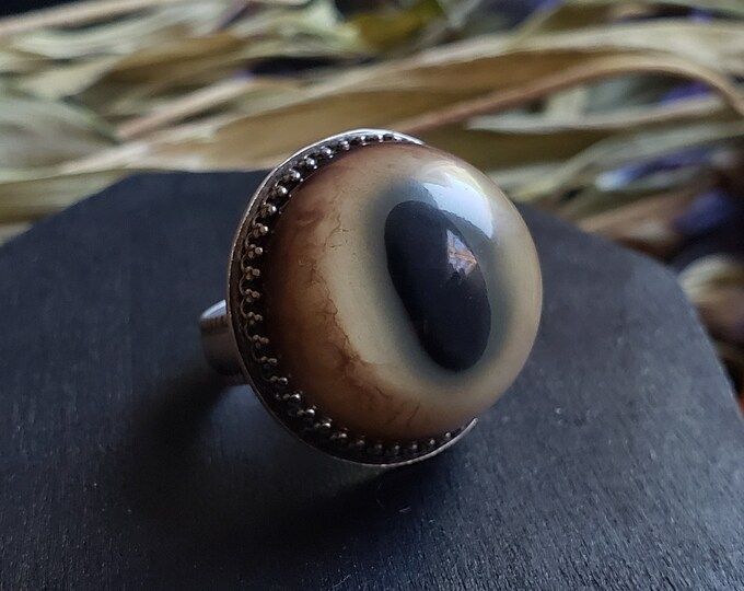 Bobcat Glass Eye Ring Size 5.5 | Sterling Silver