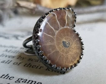 Ammonite Fossil Sterling Silver Ring Size 6.75