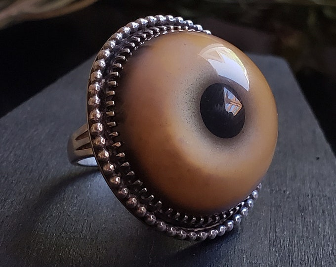 Tiger Glass Eye Ring Size 7 | Taxidermy | Sterling Pendant