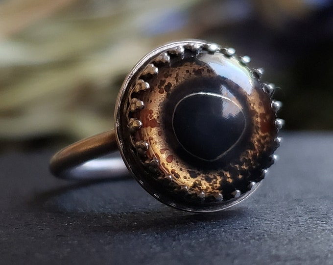 Bass Glass Eye Ring Size 4.75 | Sterling Silver