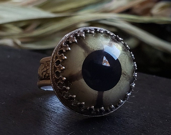 Reptile Glass Eye Ring Size 7.25 | Taxidermy | Sterling Silver