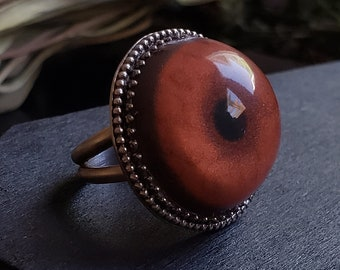 Cheetah Glass Eye Ring Size 8.5| Taxidermy | Sterling Silver