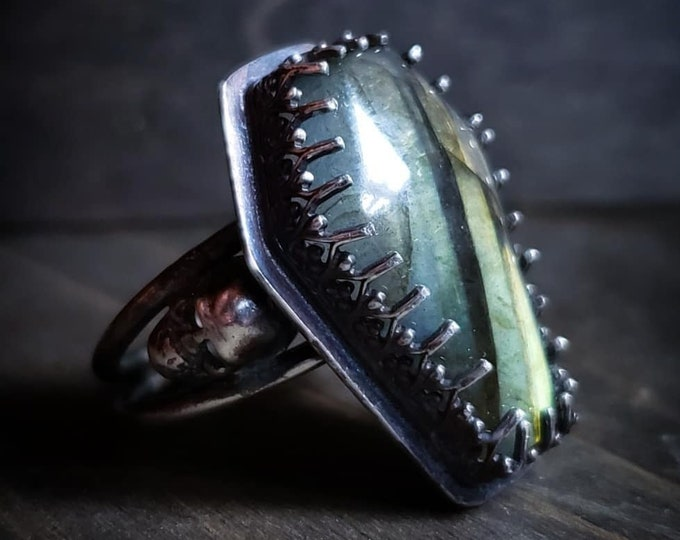 Labradorite Coffin & Skull Double Band Ring Size 6.5 | Oxidized Sterling Silver