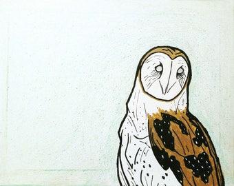 Owl In June
