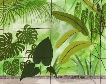 A4 GREENHOUSE botanical garden illustration giclée print