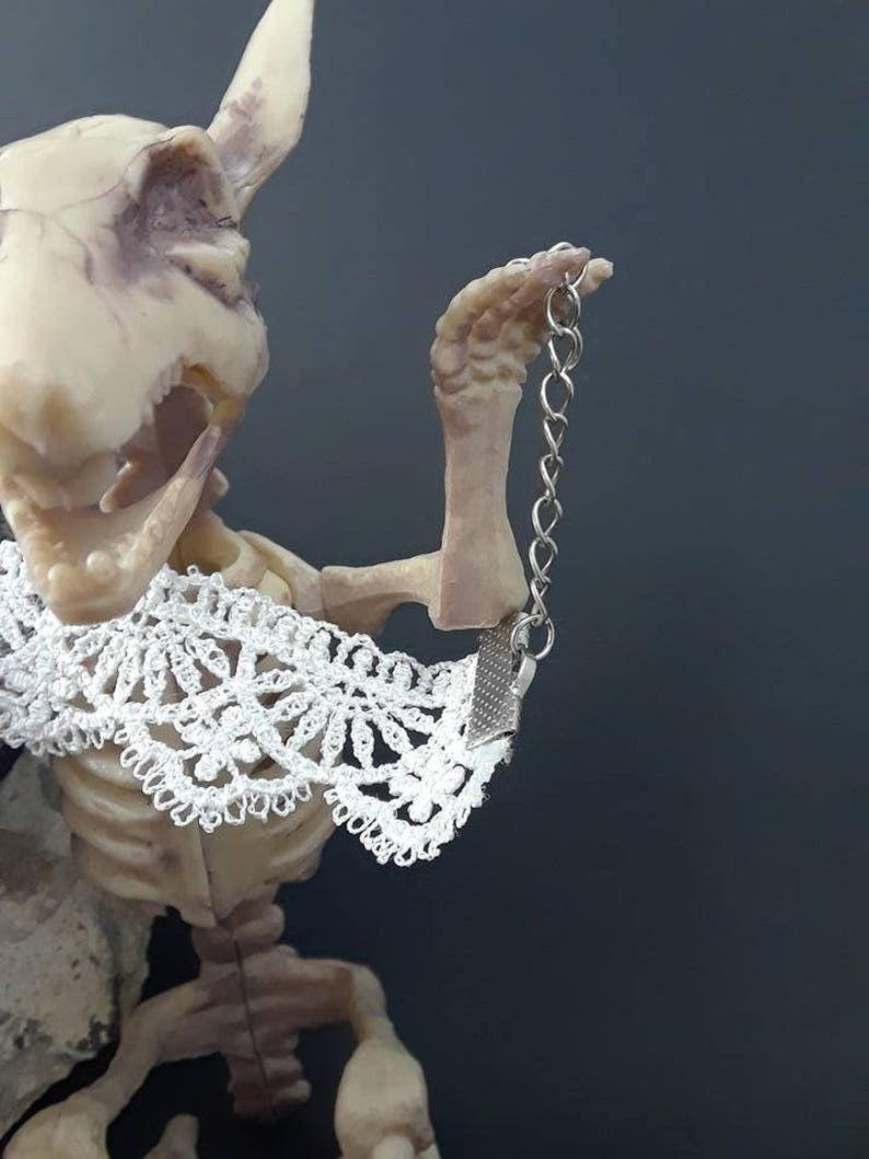 Necklace real bone /& tooth Victorian Punk inspired