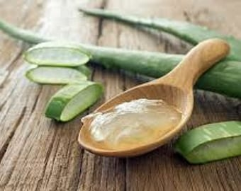 Herbal Aloe & Shea Botanical Lotion
