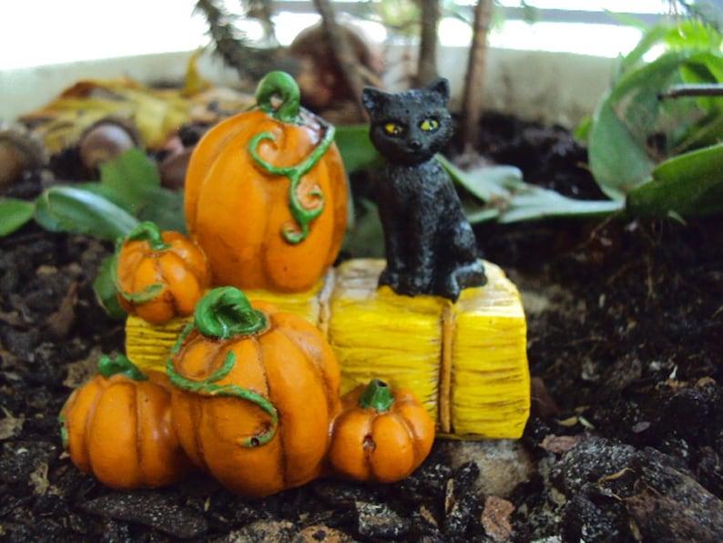 Miniature Dollhouse FAIRY GARDEN Accessories ~ Rustic HALLOWEEN Black Cat Pick