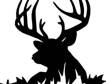Buck in Bushes