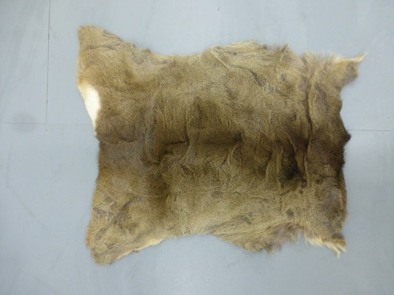Fallow deer skin hide fur pelt rug home decor gothic shamanic interior ornament