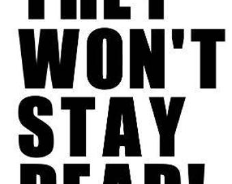 They Won't Stay Dead Night of the Living Dead Zombie Horror Vinyl Car Decal Bumper Window Sticker Any Color Multiple Sizes