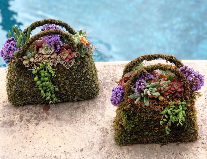Succulent Moss Purse