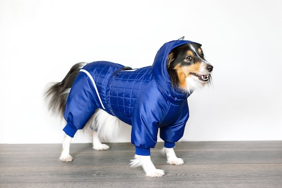 Dog Snowsuit. Winter Clothes for dogs. Dog Full Body Suit ...