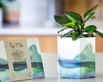 Pop Up Pot 'Mountain'