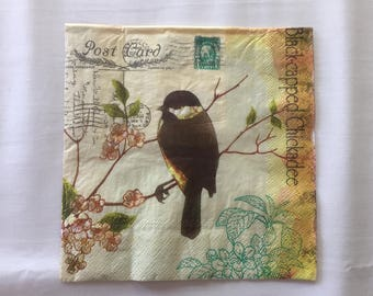 Postcard Brown Bird #8