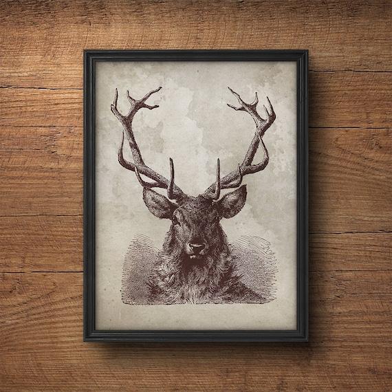 Cartel de las cornamentas de los ciervos las cornamentas de | Etsy