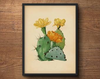 Cactus print, Large cactus print, Cactus poster, Cactus wall art, Cactus artwork, Botanical print, Botanical art, Cactus art, Wall art
