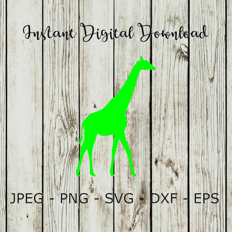Buy 3 Get 1 Free Giraffe Silhouette Animal Clipart Digital Etsy