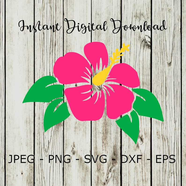 Buy 3 Get 1 Freehibiscus Flower Silhouette Clipart Digital Etsy