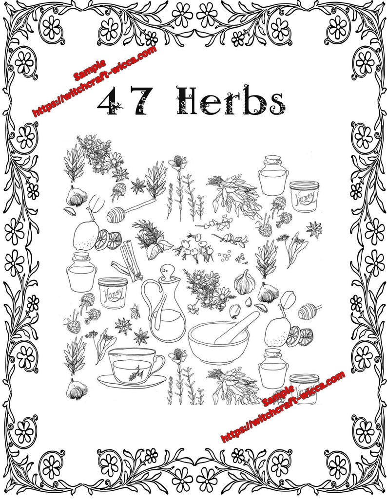 Coloring Book Of Shadows 47 Herbs For Emotional And Spiritual Healing 18 Pages Book Of Shadows Printable