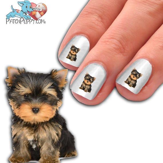 Way Too Cute Yorkie Puppy Nail Art Kit Dog Nail Decals Waterslide Nail Decals Yorkie Nail Decals